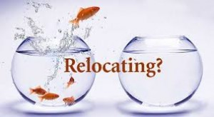 Relocating Fish