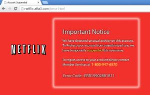 Netflix unauthorized activity