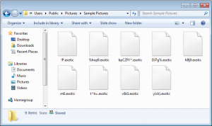 exotic-ransomware-encryption